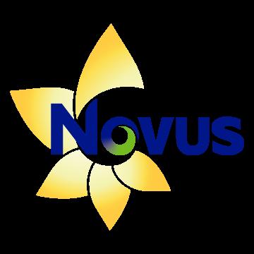 Novus Landscape